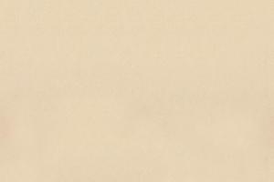 Katalog_erste_Seite_-Hintergrund-_2014_0286.jpg